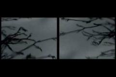 boldizsar_csernak___united_kingdom_a_single_glass_of_water_lights_up_the_world__2009_video