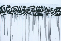 8_fathi_hassan