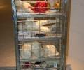 gerardo_di_fiore_italia_to_look_for_a_new_market__2010_installazione